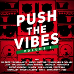 "Fuori ""PUSH THE VIBES VOL.1"" con GENERAL LEVY, VIRTUS, WUFER e tanti altri"